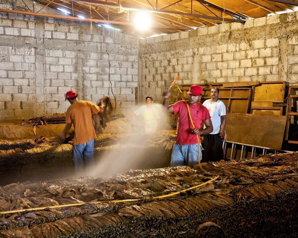 Dominican Republic Cigar Manufacturing - Commercial Photography for Marketing, Advertising & Website Design - Palm Island Creative