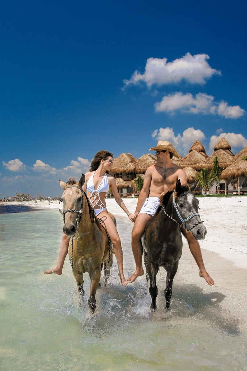 Travel & Tourism Photography - Website Design for Travel Industry - Palm Island Creative